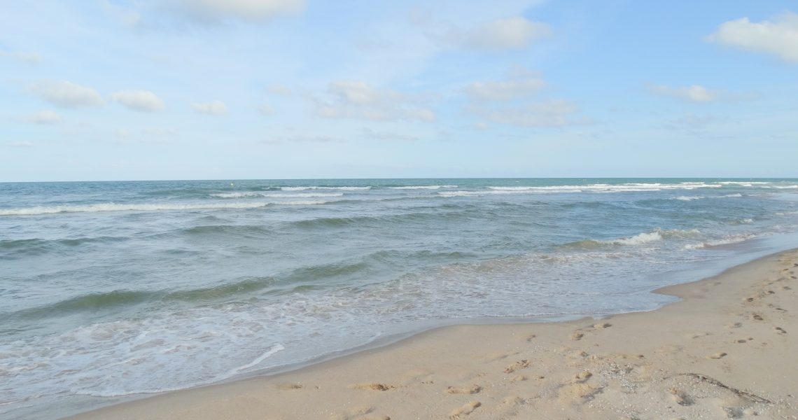 Playa (4)